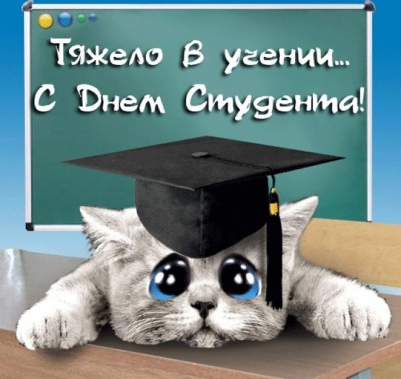 Вечный студент открытка